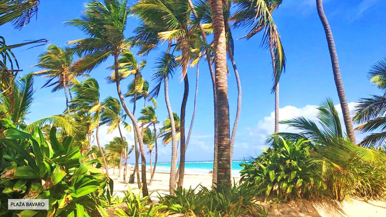 Art Villa Dominicana Dominikana Punta Cana