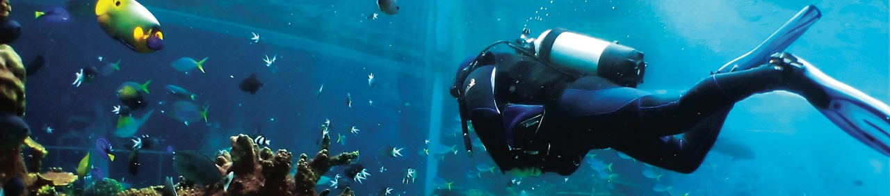 malediwy oferta coral travel